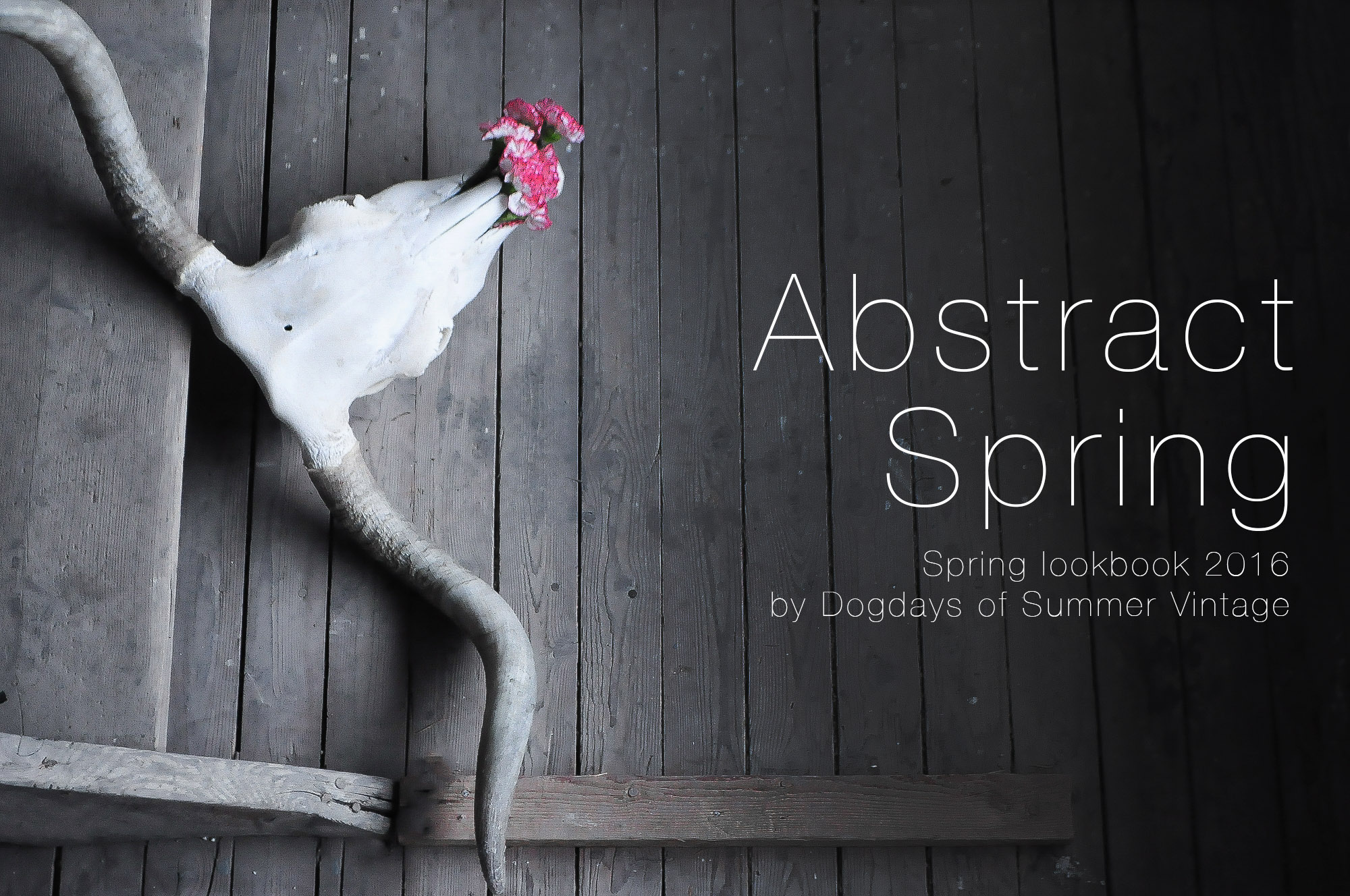 Dogdays of Summer Abstract Spring Lookbook