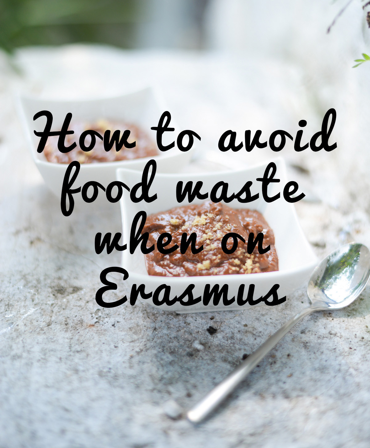 how to avoid food waste when on erasmus 2