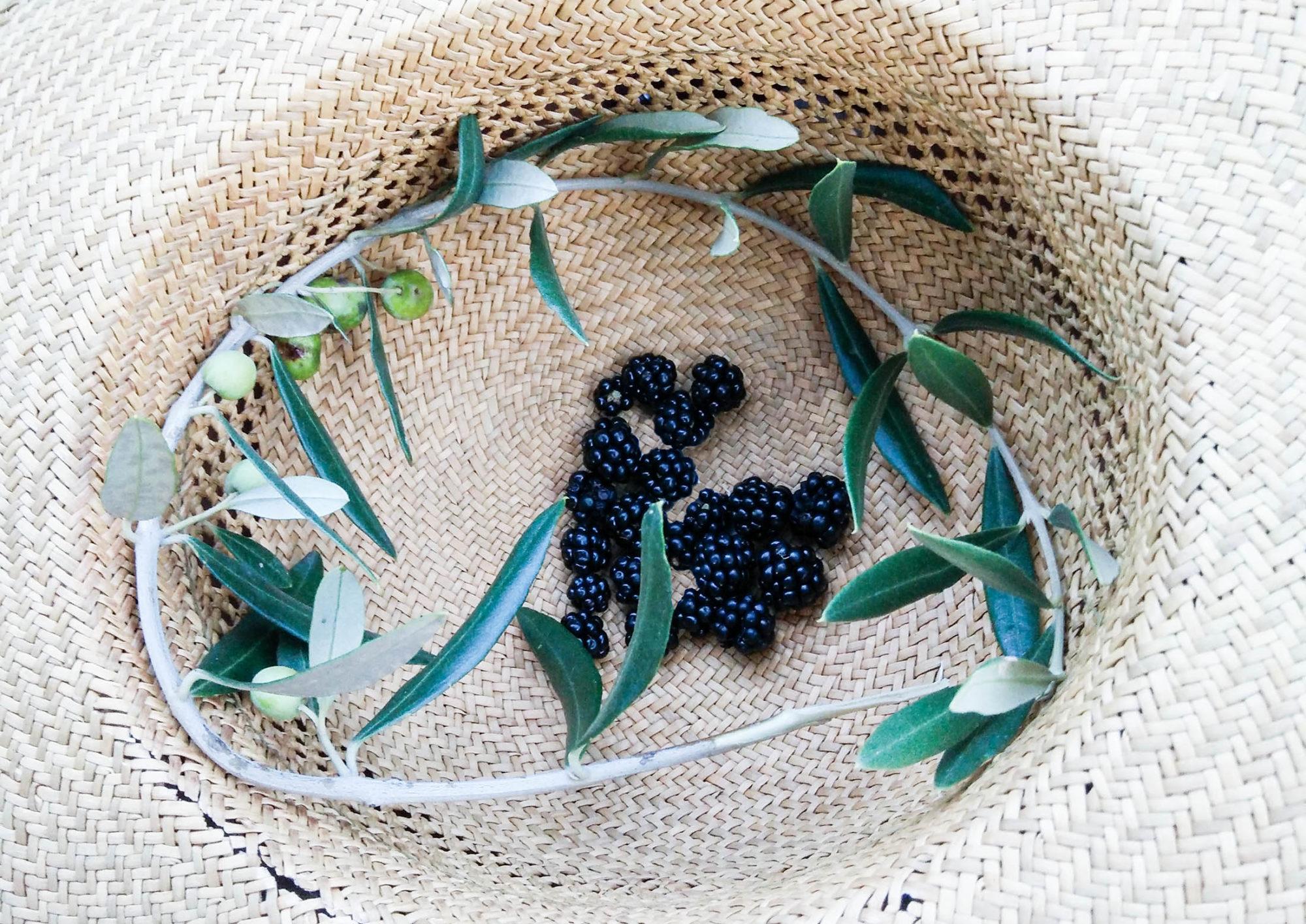 blackberries dogdays of summer vintage onlineshop graz österreich austria tuscany vegan food guide blog