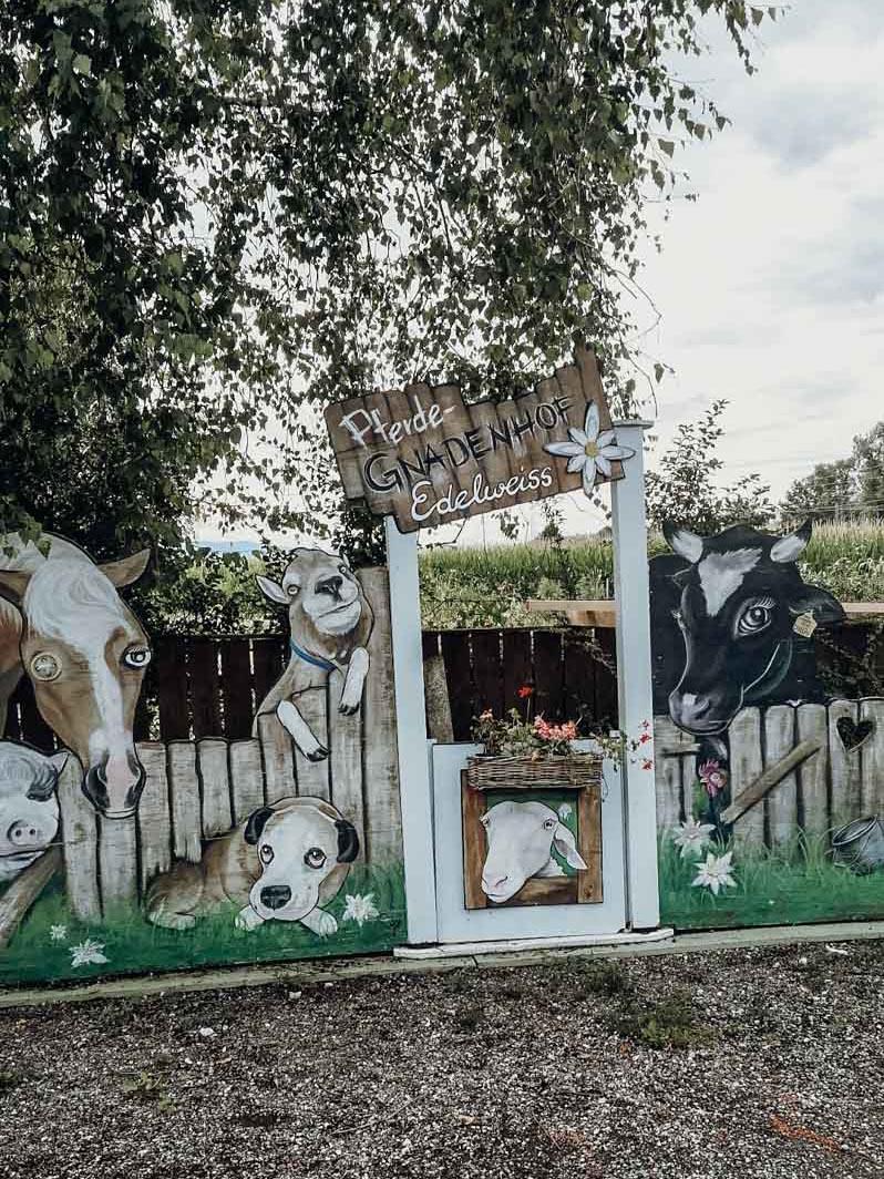 Ein Wochenende in Graz – dein Local Guide. Pferdegnadenhof Edelweiss in Wildon.