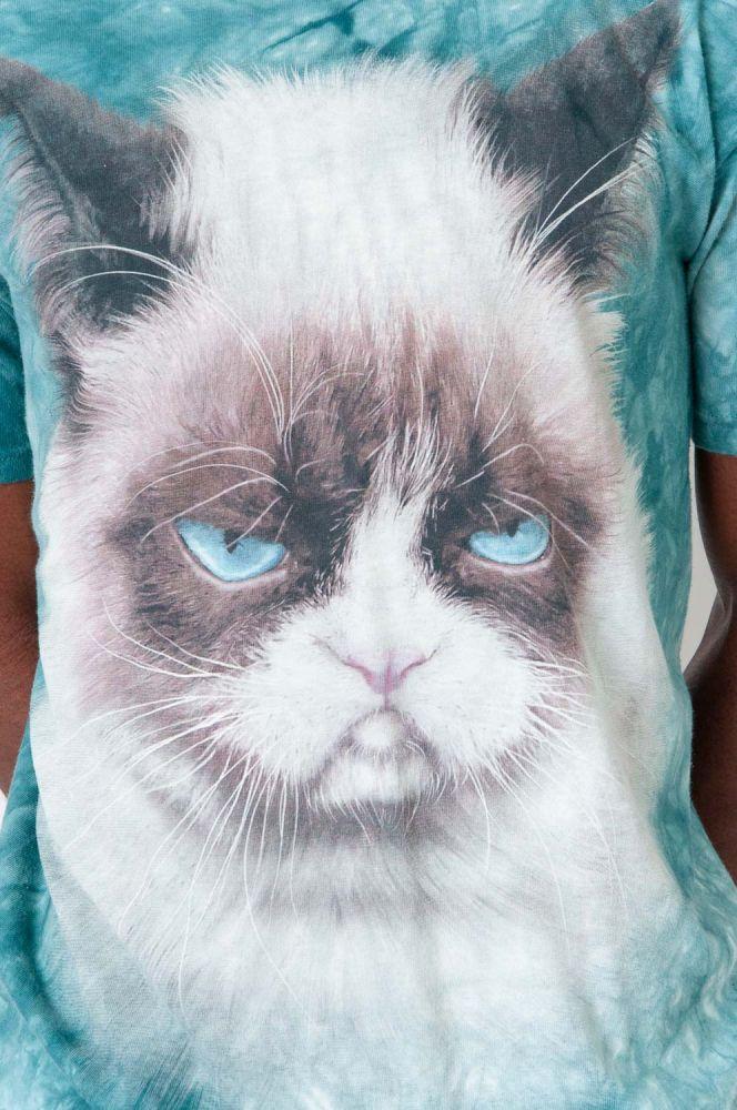 Really Grumpy Cat 3