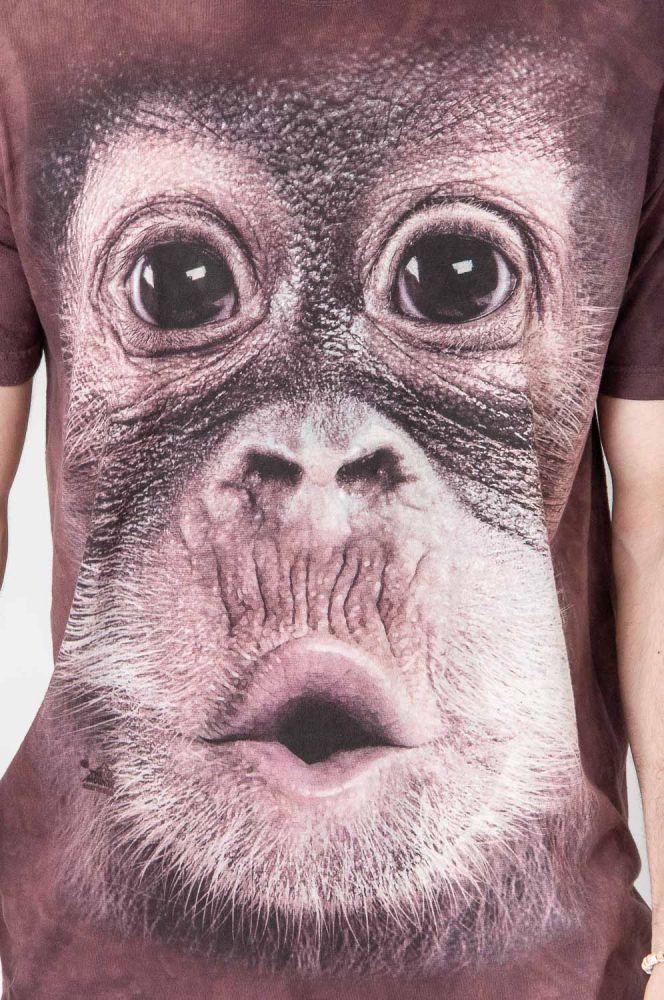 My Monkey Doesn't Know 4