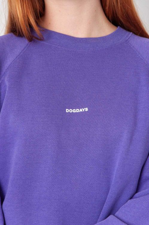 Dogdays Sweatshirt 2